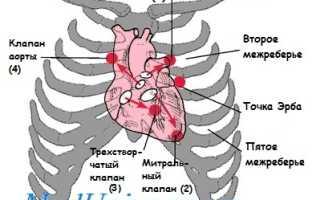 Какое сердцебиение у детей