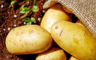 С какого возраста можно картошку грудничку