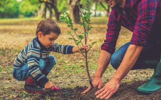 Какие качества нужно воспитывать в сыне