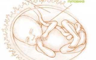 20 неделя беременности что происходит