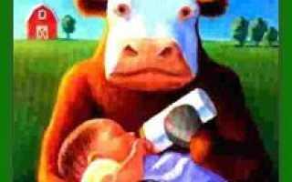 Аллергия на коровий белок у грудничка