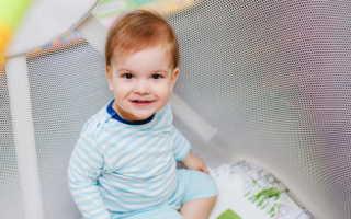 Развитие ребенка в год и три