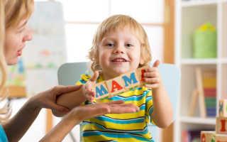 Развитие речи детей 5 6 лет