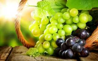 С какого возраста можно виноград ребенку